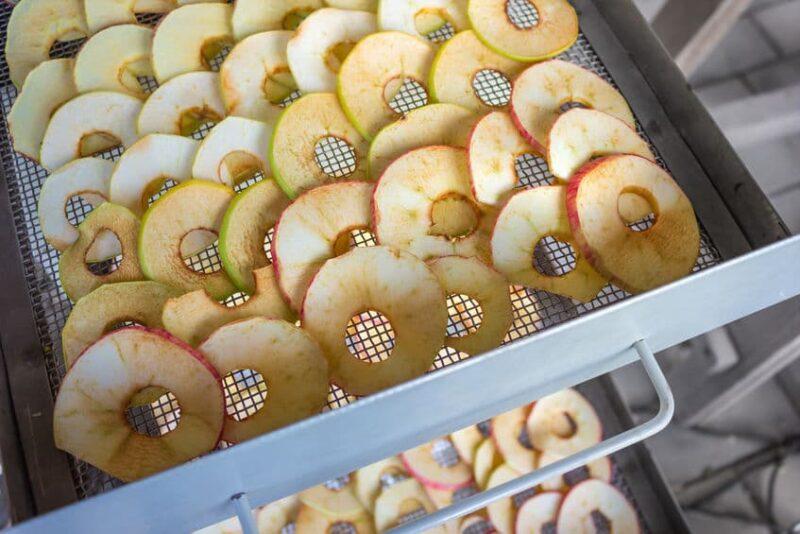 Horno deshidratador de frutas